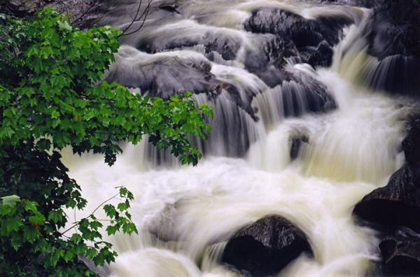 Chattooga River Close-up