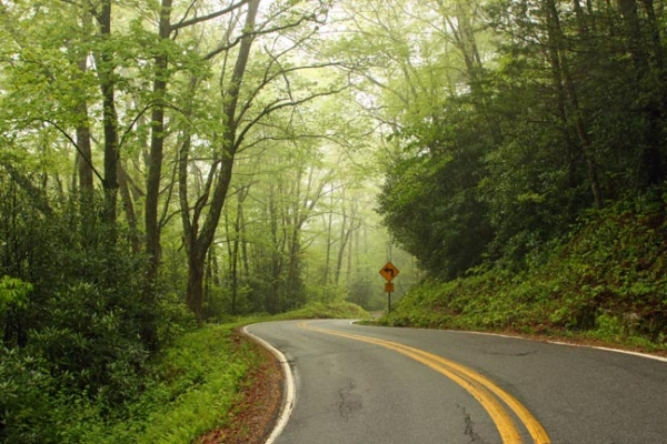 mountain road in spring