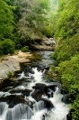 summer on the Chattooga River